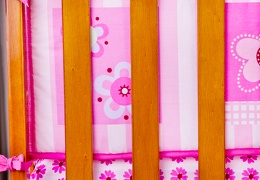 Pink Butterfly and Flower 5 Pc Reversible Full Size crib set