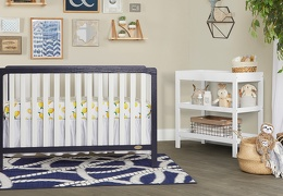 NVYW - Ridgefield 5 in 1 Convertible Crib Roomshot  02